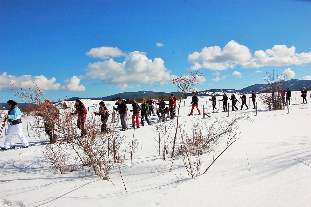Ciaspolate, Divertirsi naturalmente, trekking in Sila inverno