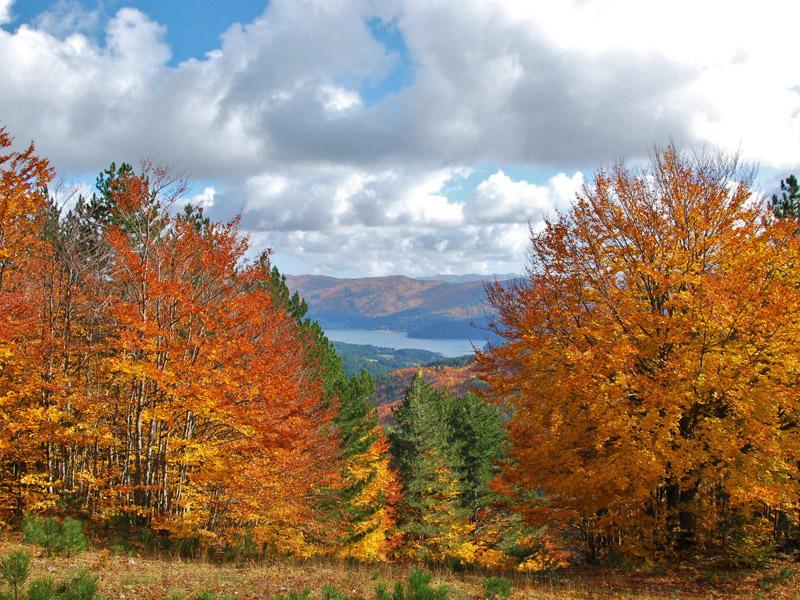 La bellezza di camminare in autunno 2
