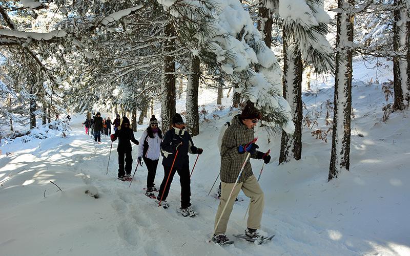 gli 11 benefici del trekking